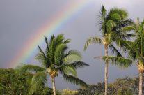 A rainbow in Maui